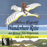 Wunderbare Reise des kleinen Nils Holgersson mit den Wildgänsen - Selma Lagerlöf