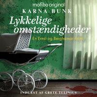 En Ernst og Berghamar-krimi – Lykkelige omstændigheder - Karna Bunk