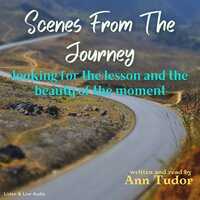 Scenes From The Journey - Ann Tudor