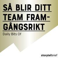 Så blir ditt team framgångsrikt - Daily Bits Of