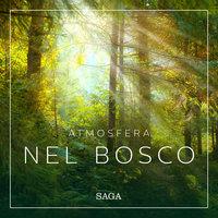Atmosfera - Nel bosco - Rasmus Broe