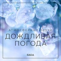 Атмосферные звуки – Дождливая погода - Расмус Бро