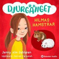 Hilmas hamstrar - Jenny Alm Dahlgren