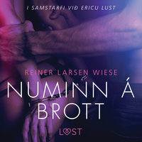 Numinn á brott - Erótísk smásaga - Reiner Larsen Wiese