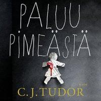 Paluu pimeästä - C.J. Tudor