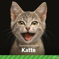 Katte - Trine Risom Andersen