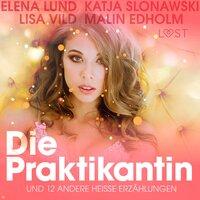 Die Praktikantin und 12 andere heiße Erzählungen - Lisa Vild, Malin Edholm, Katja Slonawski, Elena Lund