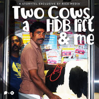 Two Cows, a HDB Lift, and Me - RICE media