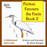 Fiction Favours the Facts: Book 2 - Mark Morgan