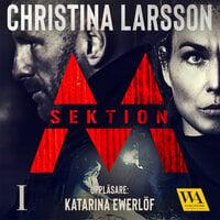 Sektion M I - Christina Larsson