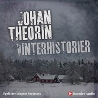 Vinterhistorier - Johan Theorin