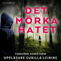 Det mörka hatet - Torbjörn Sundström