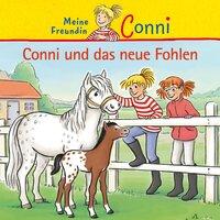 Conni und das neue Fohlen - Julia Boehme,Hans-Joachim Herwald,Ludger Billerbeck