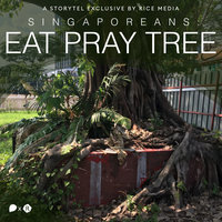 Singaporeans Have Been Praying to Trees For Over 200 Years. Here's Why - RICE media