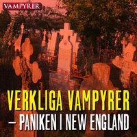 Verkliga vampyrer – paniken i New England - Bokasin