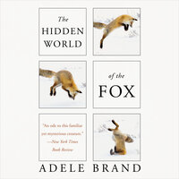 The Hidden World of the Fox - Adele Brand