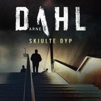 Skjulte dyp - Arne Dahl