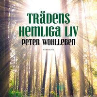 Trädens hemliga liv - Peter Wohlleben