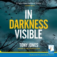 In Darkness Visible - Tony Jones