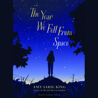 The Year We Fell from Space - Amy Sarig King