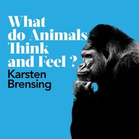 What Do Animals Think and Feel? - Karsten Brensing