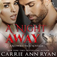 A Night Away - Carrie Ann Ryan