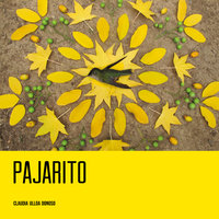 Pajarito - Claudia Ulloa