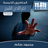 لغز اللص الشبح - محمود سالم