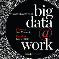 Big Data @ Work - Thomas Davenport