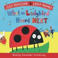 What the Ladybird Heard Next - Julia Donaldson