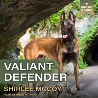 Valiant Defender - Shirlee McCoy