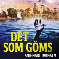Det som göms - Ann-Mari Tormalm
