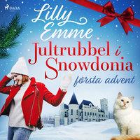 Jultrubbel i Snowdonia: första advent - Lilly Emme