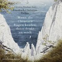 Wenn die Chinesen Rügen kaufen, dann denkt an mich - Friedrich Christian Delius