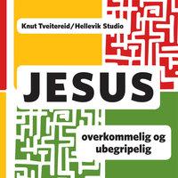 Jesus - Overkommelig og ubegripelig - Knut Tveitereid