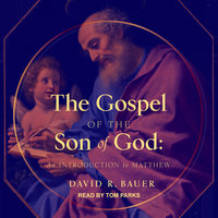 The Gospel of the Son of God: An Introduction to Matthew - David R. Bauer