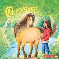 Anni findet ein Pony - Usch Luhn