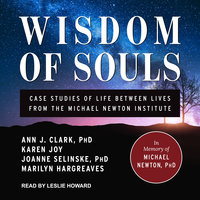 Wisdom of Souls: Case Studies of Life Between Lives From The Michael Newton Institute - Ann J. Clark, Marilyn Hargreaves, Karen Joy, Joanne Selinske