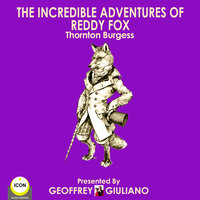 The Incredible Adventures Of Reddy Fox - Thornton Burgess