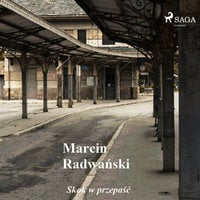 Skok w przepaść - opowiadania - Marcin Radwański