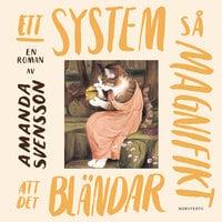 Ett system så magnifikt att det bländar - Amanda Svensson