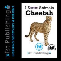 Cheetah - August Hoeft