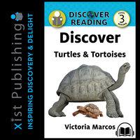 Discover Turtles & Tortoises - Victoria Marcos