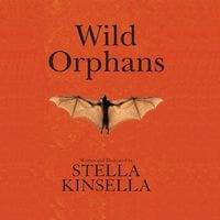 Wild Orphans - Stella Kinsella