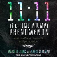 11:11 The Time Prompt Phenomenon - Marie D. Jones, Larry Flaxman