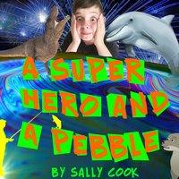 A Superhero and a Pebble - Sally Cook