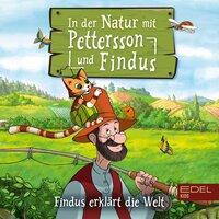 In der Natur mit Pettersson und Findus: Findus erklärt die Welt - Angela Strunck