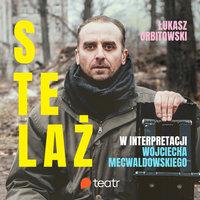Stelaż - Łukasz Orbitowski