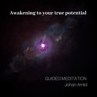 Awakening to your true potential - Johan Arnkil