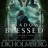 Shadow Blessed - D.K. Holmberg